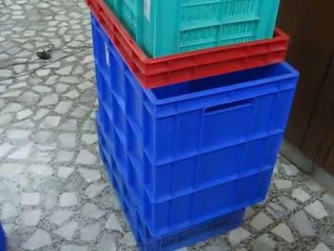 +919829051660, GLOBAL STAR, ICE BOX, Insulated Boxes,  Shippers, +919829051660