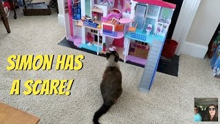 Let's Chat Family Room Tour & Simon Has A Scare Vlog   PaulAndShannonsLife