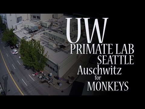 UW  Primate Lab. Western Avenue Seattle WA