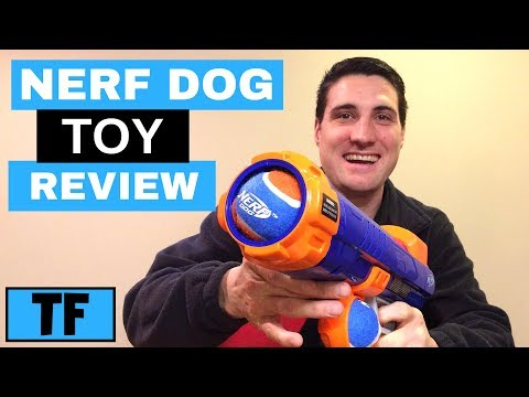 Nerf Dog Ball Launcher! Best Dog Play Toy For Your Puppy?