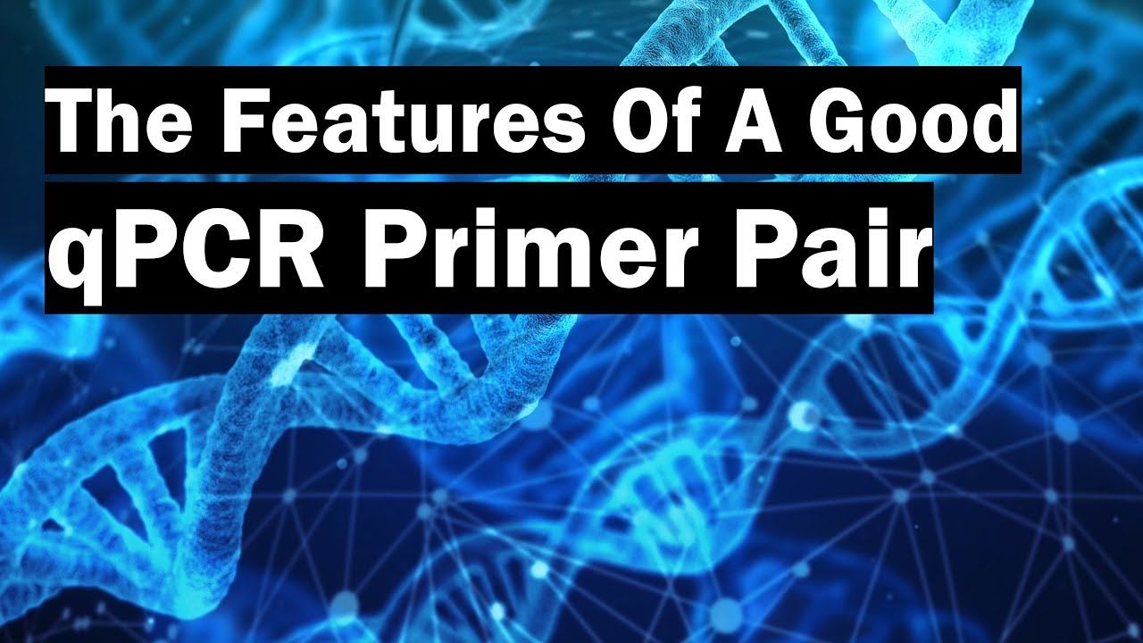 How To Create Real Time Pcr Primers Using Primer Blast Youtube