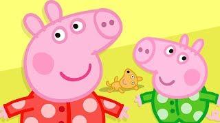 Peppa Wutz | Pyjama Spaß mit Peppa und George! | Peppa Pig Wutz | Cartoons für Kinder
