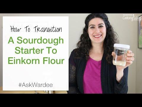 how-to-transition-a-sourdough-starter-to-einkorn-flour-|-#askwardee-069