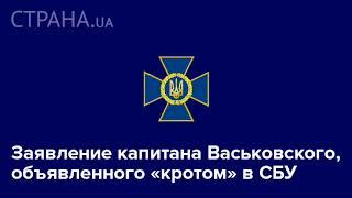 Заявление капитана Васьковского, объявленного «кротом» в СБУ | Страна.ua