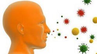 Борьба организма с инфекцией. Урок биологии.