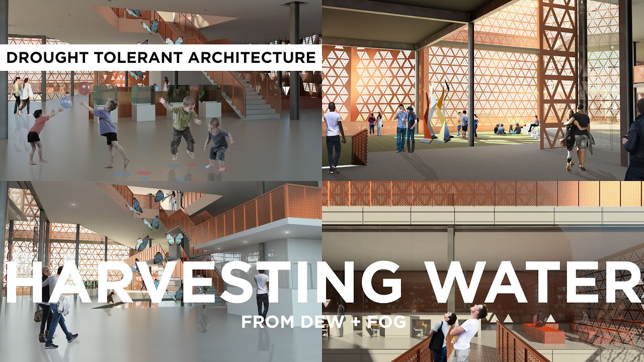 Drought Tolerant Architecture: Learning from Nature to Design Water Smart Buildings