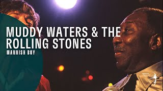 Muddy Waters The Rolling Stones Mannish Boy Live At