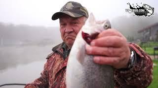 vip-prud.com Платная рыбалка в Подмосковье. Trout fishing. Salmon fishing.Ловля форели.
