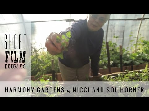Short Film Fridays |  Harmony Gardens presented Real Food Media