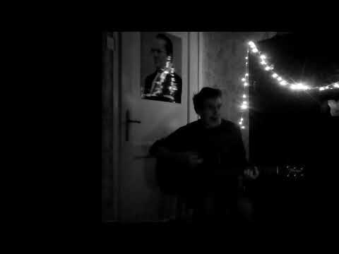 the Last Shadow Puppets - Dracula Teeth [Acoustic Cover]