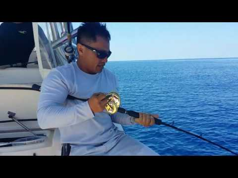 Florida welcome NY's bros Offshore Fishing 2