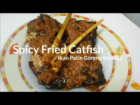 Spicy Fried Catfish Recipe Resepi Ikan Patin Goreng Berlada
