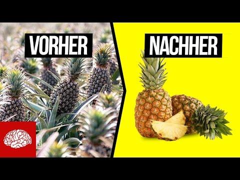 So sieht unser Essen in der Natur aus