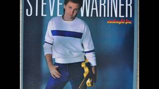 Steve Wariner - Why Goodbye
