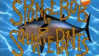 Spongebob kanciastoporty czołówka