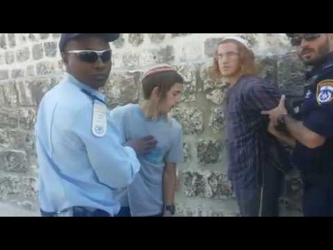 Over 10 Jews arrested on Har Habayis this morning