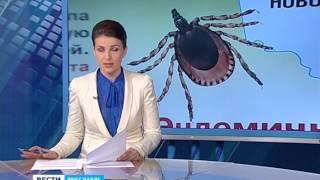 """Обучение """"по обмену"""" могло стоить жизни ярославской школьнице"""