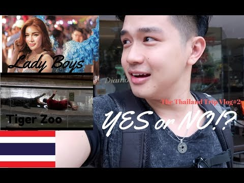 Lady boys from Thailand + Tiger Zoo . Yes or No!? | Thailand Trip Vlog #2 | Lancegutierrez