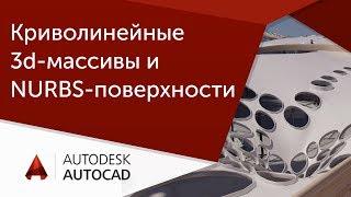 [Урок AutoCAD] Криволинейные 3d-массивы и NURBS-поверхности