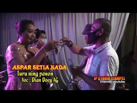 Aspar Setia Nada / Turu Ning Pawon / Dian Doey AG
