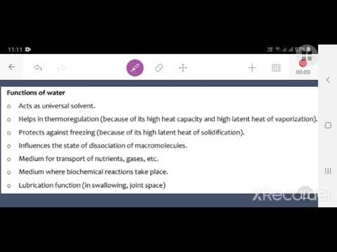 Functions Of Water And Body Fluid Composition