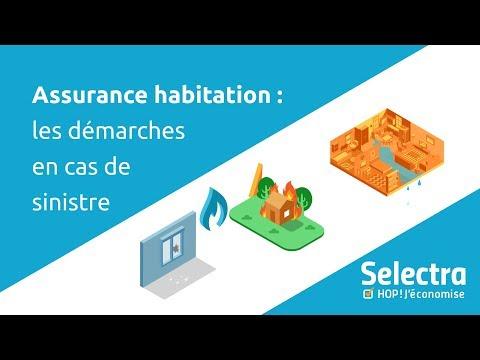 Sinistre Assurance Habitation Delai De Remboursement Et Lettre