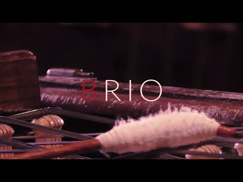 Made In France/Jazz Waltz - BRIO band