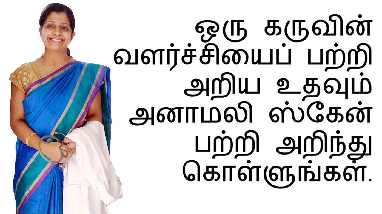 (Tamil) Learn about the Anomaly Scan procedure to assess the structural  development of a fetus