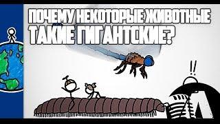ПОЧЕМУ НЕКОТОРЫЕ ЖИВОТНЫЕ ТАКИЕ ГИГАНТСКИЕ? | RUS VOICE [НАУКА]