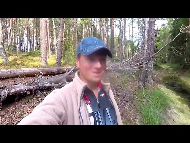 Велопутешествие по России. Дорога к Мёртвому озеру Смоленского Поозерья