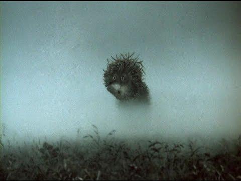 Ежик в тумане смотреть -