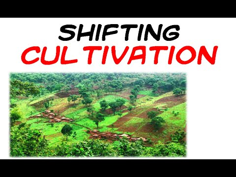 Shifting cultivation - YouTube