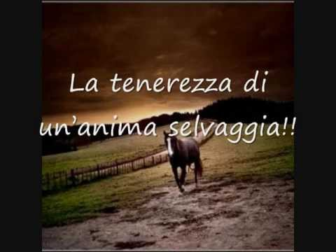 Ben noto Poesia sui cavalli. - YouTube OM81