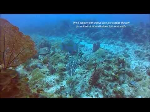Gladden Spit Marine Reserve, Special Edition BELIZE