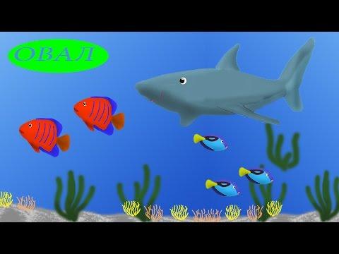 мультик про рыбок и рыбалку на пляже