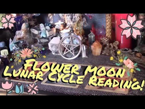 Lunar Cycle Reading | Flower Moon 2017