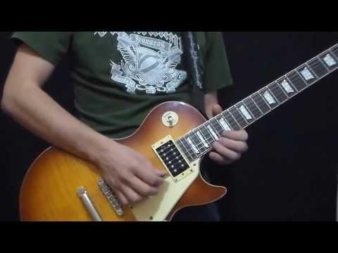 Lynyrd Skynyrd - I Never Dreamed (Solo)