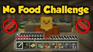 My Hardest Challenge Yet: Can You Beat Minecraft Without Eating?