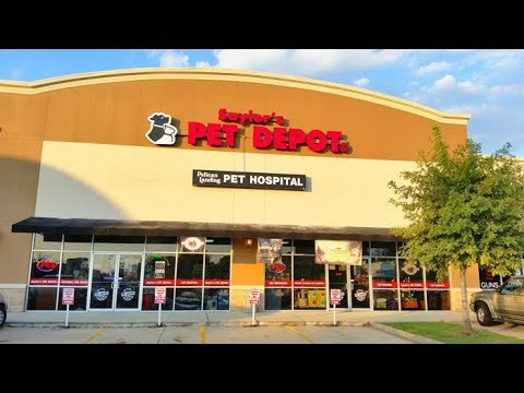 5 TRUE SCARY Pet Store Horror Stories