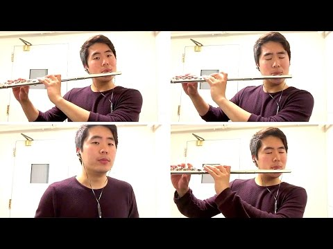 Flight of the Bumblebee Flute Cover