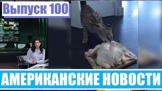 Видео Hack News - Американские новости (Выпуск 100)