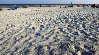 Hilton Head Island Coligny Beach Park At Forest Beach