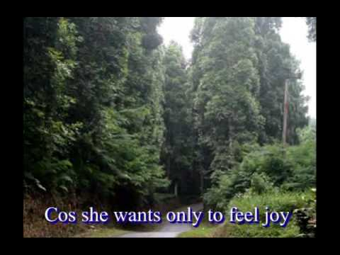 Just For You - Richard Cocciante - with Lyrics
