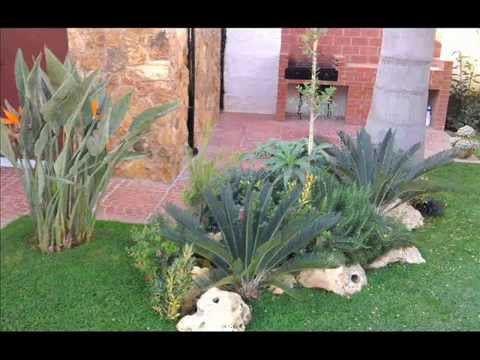 Giardino youtube for Piante di giardino