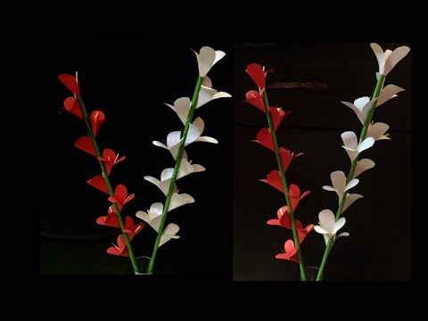 How to make a gift flower | Easy flowers making | Home made gift idear | DIY-Beauty Of Paper