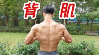 背肌訓練技巧   增強背肌感受度(幫助所有背肌動作!)