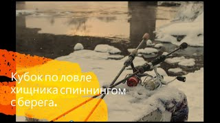 ЗИМНИЙ СПИННИНГ Кубок по ловле хищника