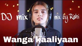 Wanga kaaliyaan dj remix (mix by Rishi)