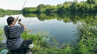Кайфовая Рыбалка на Реке Поклевки онлайн Живописная природа Ловля на Фидер 2020