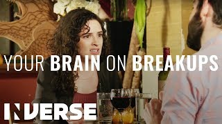 Your Brain on Breakups | Inverse